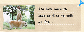 Too busy working, have no time to walk my dog...